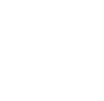 Lithium Networks Partner Icon Meraki